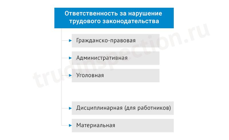 administrativnaya-otvetstvennost-za-narushenie-trudovogo-i-migraczionnogo-zakonodatelstva-2