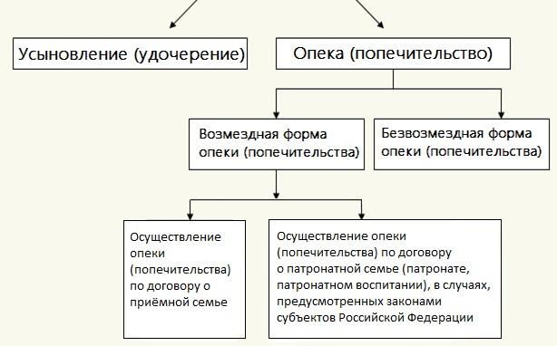 chem-otlichaetsya-opekunstvo-ot-usynovleniya-rebenka-v-rossii-2