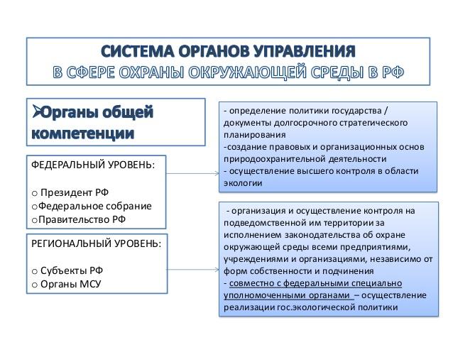 organy-gosudarstvennoj-ekologicheskoj-politiki-rf-2
