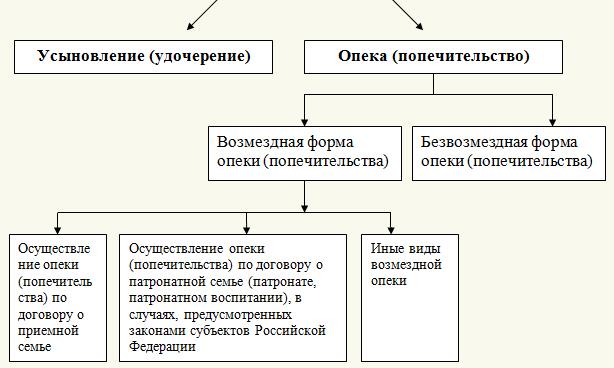 osobennosti-usynovleniya-i-opeki-v-rf-3