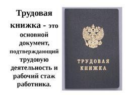trudovaya-knizhka-250x188-8280335