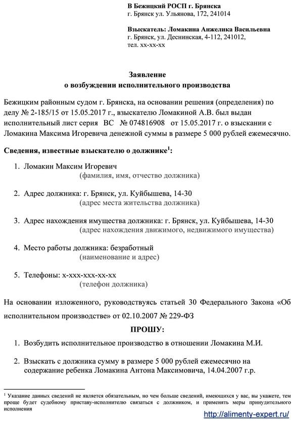 vozbuzhdenie-ispolnitelnogo-proizvodstva-sudebnymi-pristavami-ispolnitelyami-poryadok-ispolneniya-resheniya-suda-2